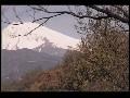 清流柿田川5