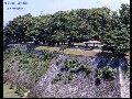 岩手公園の風景・行事