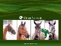クレインの馬たち(3)