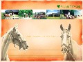 クレインの馬たち(4)