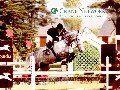 クレインの馬たち(5)